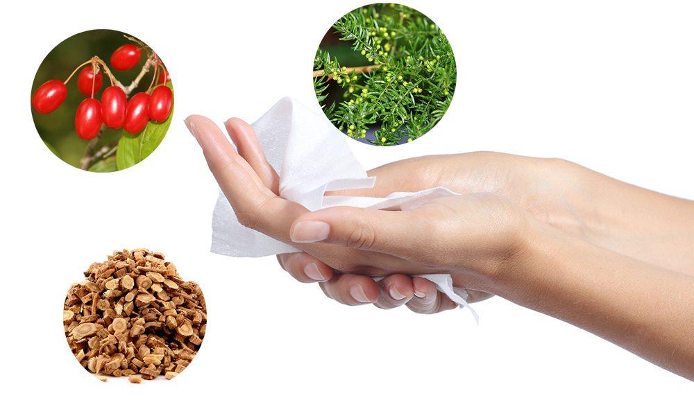 Trị mồ hôi tay chân bằng thảo dược là liệu pháp an toàn nhất